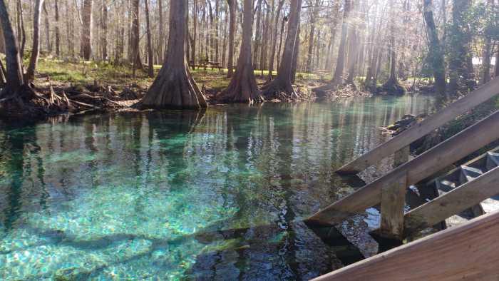 river tubing at ginnie springs