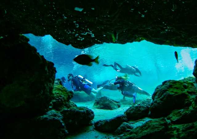 scuba diving at ginnie springs